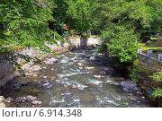 Купить «Горная река Боржоми. Грузия», фото № 6914348, снято 6 июля 2013 г. (c) Евгений Ткачёв / Фотобанк Лори