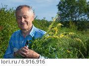Купить «Пожилой мужчина со срезанной лекарственной травой», эксклюзивное фото № 6916916, снято 22 июня 2014 г. (c) Короленко Елена / Фотобанк Лори