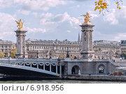 Купить «Париж, мост Александра III на фоне облачного неба», фото № 6918956, снято 5 ноября 2014 г. (c) Михаил Никитин / Фотобанк Лори