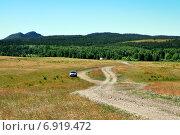 Купить «Казахстанская лесостепь», фото № 6919472, снято 21 июня 2014 г. (c) Александр Тараканов / Фотобанк Лори
