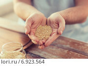 Купить «cloes up of male cupped hands with quinoa», фото № 6923564, снято 21 января 2014 г. (c) Syda Productions / Фотобанк Лори