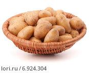 Купить «Potato tuber in wicker basket isolated on white background», фото № 6924304, снято 31 октября 2013 г. (c) Natalja Stotika / Фотобанк Лори