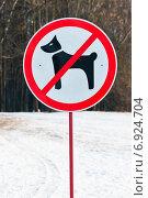 Купить «Запрещающий знак выгул собак запрещён в центральном парке города Тулы», эксклюзивное фото № 6924704, снято 19 января 2015 г. (c) Игорь Низов / Фотобанк Лори