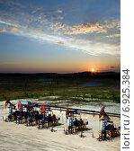 Купить «Нефтяные качалки на фоне заката. Восточная Сибирь», фото № 6925384, снято 6 июня 2011 г. (c) Георгий Shpade / Фотобанк Лори