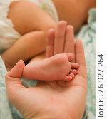 Младенческая ножка в женской руке. Стоковое фото, фотограф Анастасия Улитко / Фотобанк Лори