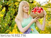 Купить «Девушка собирает урожай яблок», фото № 6932716, снято 20 сентября 2009 г. (c) Мария Разумная / Фотобанк Лори