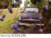 Автомобиль победа (2010 год). Редакционное фото, фотограф Анна Милованова / Фотобанк Лори