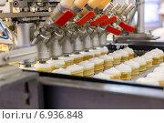 Автоматическая линия по производству мороженого, фото № 6936848, снято 25 декабря 2014 г. (c) Евгений Ткачёв / Фотобанк Лори