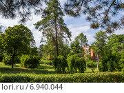 Купить «Сквер «Берёзка» в городе Азов», фото № 6940044, снято 13 июня 2014 г. (c) Борис Панасюк / Фотобанк Лори