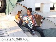 Купить «Уличный музыкант с аккордеоном и собакой», фото № 6940400, снято 26 октября 2014 г. (c) Мария Николаева / Фотобанк Лори