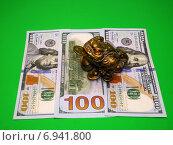 Трехногая жаба (символ богатства). приносящая деньги. Стоковое фото, фотограф Александр Боровиков / Фотобанк Лори