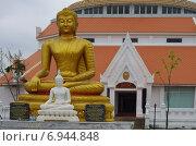 Купить «Будда при входе в музей на территории храма Wat Thewa Sangkharam, Канчанабури, Таиланд», фото № 6944848, снято 11 января 2015 г. (c) Natalya Sidorova / Фотобанк Лори