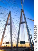 Вантовый мост ранним утром (2011 год). Стоковое фото, фотограф Оксана Алексеенко / Фотобанк Лори