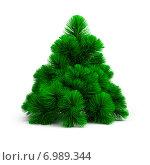 Купить «Маленькая елка», иллюстрация № 6989344 (c) Anatoly Maslennikov / Фотобанк Лори