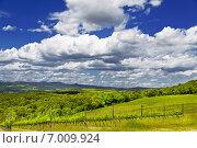 Купить «Сельский пейзаж Тосканы. Италия», фото № 7009924, снято 13 мая 2014 г. (c) Наталья Волкова / Фотобанк Лори