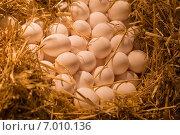 Купить «Куриные яйца в соломе, в теплых тонах», фото № 7010136, снято 7 февраля 2015 г. (c) Gagara / Фотобанк Лори