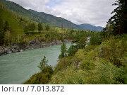 Купить «Вид на реку Катунь. Россия, Алтай», фото № 7013872, снято 9 августа 2014 г. (c) Александр Карпенко / Фотобанк Лори