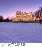 Елагиноостровский дворец в Петербурге зимой (2015 год). Стоковое фото, фотограф Алексей Марголин / Фотобанк Лори