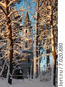 Финская кирха в Токсово сквозь заснеженные деревья зимой на закате. Стоковое фото, фотограф Алтанова Елена / Фотобанк Лори