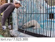 Купить «Работник парка чистит клетку с белым медведем», фото № 7023300, снято 28 августа 2013 г. (c) Светлана Попова / Фотобанк Лори