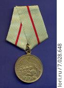 Медаль «За оборону Сталинграда» Стоковое фото, фотограф Константин Болотников / Фотобанк Лори