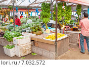 Купить «Городской рынок Мале», фото № 7032572, снято 12 февраля 2013 г. (c) Сергей Дубров / Фотобанк Лори