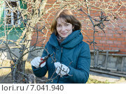 Купить «Девушка обрезает  ветви яблони осенью», фото № 7041940, снято 2 ноября 2014 г. (c) Марина Славина / Фотобанк Лори