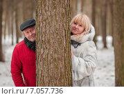 Купить «Счастливая семья. Влюблённые мужчина и женщина выглядывают из-за ствола сосны зимой в лесу», эксклюзивное фото № 7057736, снято 23 февраля 2015 г. (c) Игорь Низов / Фотобанк Лори