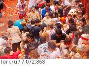 Купить «Battle of tomatoes», фото № 7072868, снято 28 августа 2013 г. (c) Яков Филимонов / Фотобанк Лори
