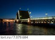 Купить «Кунсткамера. Разведенный дворцовый мост. Санкт-Петербург», эксклюзивное фото № 7079684, снято 5 июня 2011 г. (c) Александр Щепин / Фотобанк Лори