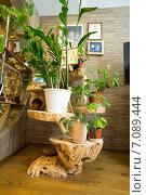 Купить «Подставка для цветов», фото № 7089444, снято 6 марта 2015 г. (c) Алексей Маринченко / Фотобанк Лори