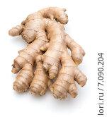 Купить «Fresh ginger root or rhizome isolated on white background cutout», фото № 7090204, снято 13 января 2015 г. (c) Natalja Stotika / Фотобанк Лори