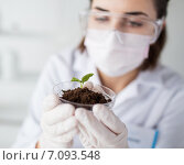 Купить «close up of scientist with plant and soil in lab», фото № 7093548, снято 9 декабря 2014 г. (c) Syda Productions / Фотобанк Лори