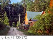 Дом в деревне около леса у дороги, ведущей в лес. Стоковое фото, фотограф Светлана Витковская / Фотобанк Лори