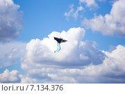 Воздушный змей в небе с облаками. Бэтмен (2014 год). Редакционное фото, фотограф Ермолаева Дина / Фотобанк Лори