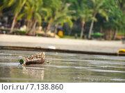 Ракушки на пляже. Стоковое фото, фотограф Александр Широков / Фотобанк Лори