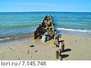 Купить «Морской пейзаж с волнорезом. Побережье Балтийского моря в Калининградской области», фото № 7145748, снято 20 июля 2013 г. (c) Сергей Трофименко / Фотобанк Лори