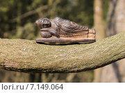 Купить «Спящий Будда на глицинии», эксклюзивное фото № 7149064, снято 19 марта 2015 г. (c) Ната Антонова / Фотобанк Лори