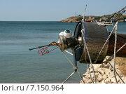 Купить «Большой комар на пляже. Скульптура из старых вещей своими руками», эксклюзивное фото № 7150964, снято 1 сентября 2014 г. (c) Щеголева Ольга / Фотобанк Лори
