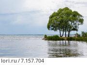 Купить «Плещеево озеро с деревьями на переднем плане», фото № 7157704, снято 14 июня 2014 г. (c) Юрий Губин / Фотобанк Лори