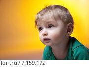 Купить «Портрет милого малыша», фото № 7159172, снято 27 февраля 2015 г. (c) Darja Vorontsova / Фотобанк Лори
