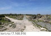 Купить «Руины древнеримских сооружений в городе Umm Qais (Umm Qays), Иордания», фото № 7168916, снято 5 апреля 2014 г. (c) Владимир Журавлев / Фотобанк Лори