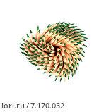 Купить «Зубочистки с мятой на белом фоне», фото № 7170032, снято 3 января 2013 г. (c) Евгений Ткачёв / Фотобанк Лори
