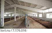 Коровник. Стоковое видео, видеограф R.I.Production / Фотобанк Лори