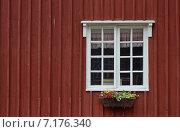 Окно с цветами (2014 год). Стоковое фото, фотограф Ильгиз Хабибулин / Фотобанк Лори
