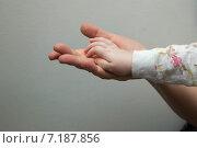 Руки. Стоковое фото, фотограф Колокольцева Людмила / Фотобанк Лори