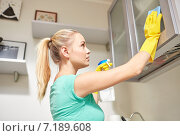 Купить «happy woman cleaning cabinet at home kitchen», фото № 7189608, снято 25 января 2015 г. (c) Syda Productions / Фотобанк Лори