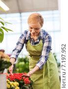 Купить «happy woman taking care of flowers in greenhouse», фото № 7197952, снято 25 февраля 2015 г. (c) Syda Productions / Фотобанк Лори