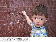Купить «Ученик начальных классов», фото № 7199504, снято 24 марта 2015 г. (c) Айнур Шауэрман / Фотобанк Лори