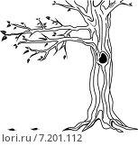 Силуэт дерева на белом фоне. Стоковая иллюстрация, иллюстратор Попова Евгения / Фотобанк Лори